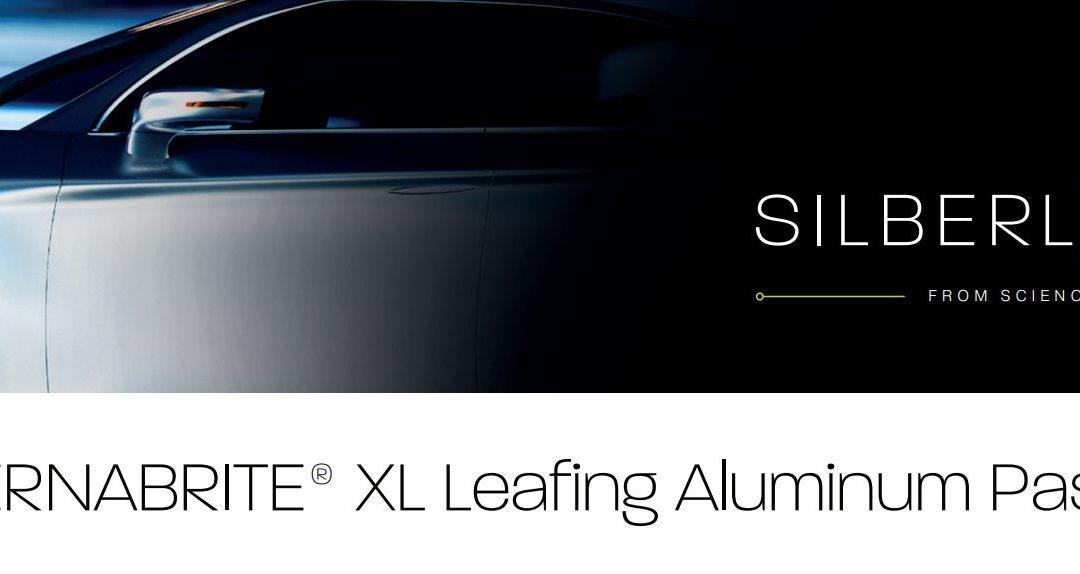ETERNABRITE XL Silberflash